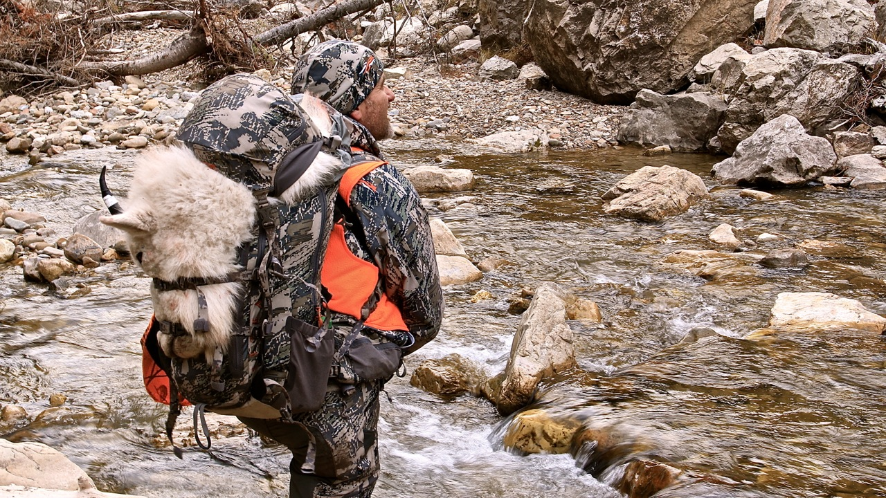 Mountain Goat,Hunting,Mountians,Back Coutnry,Steve Tittsworth,Greenback Tactical Hunters,