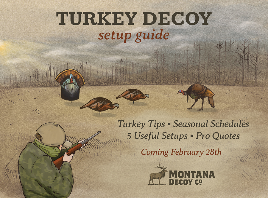 montana-turkey-decoy-setup-preview